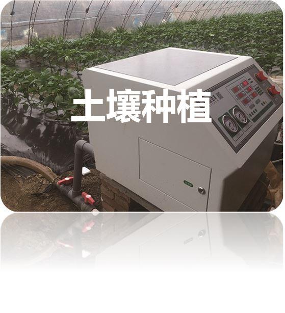土壤种植.JPG